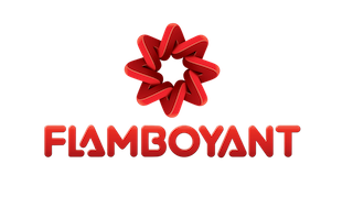 30a25c4bd Flamboyant - A Vitrine de Goiás