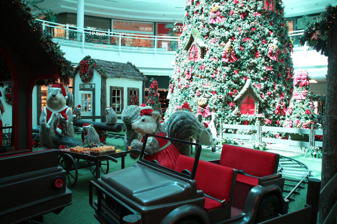Rumo ao Natal Encantado Flamboyant!